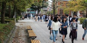Official figures hugely underestimate Japanese students studying abroad, says JAOS