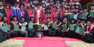 Pan African University to offer virtual education