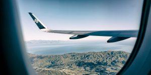 NZ: 500% return on international work placements investment