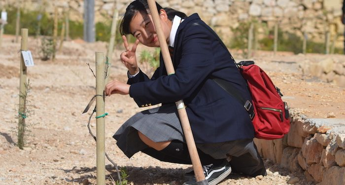 Over the past five years, Kindai students have planted 200 trees. Photo: EC English