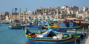 Malta ELT profitability up in 2017