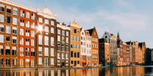 More international graduates in the Netherlands staying after five years