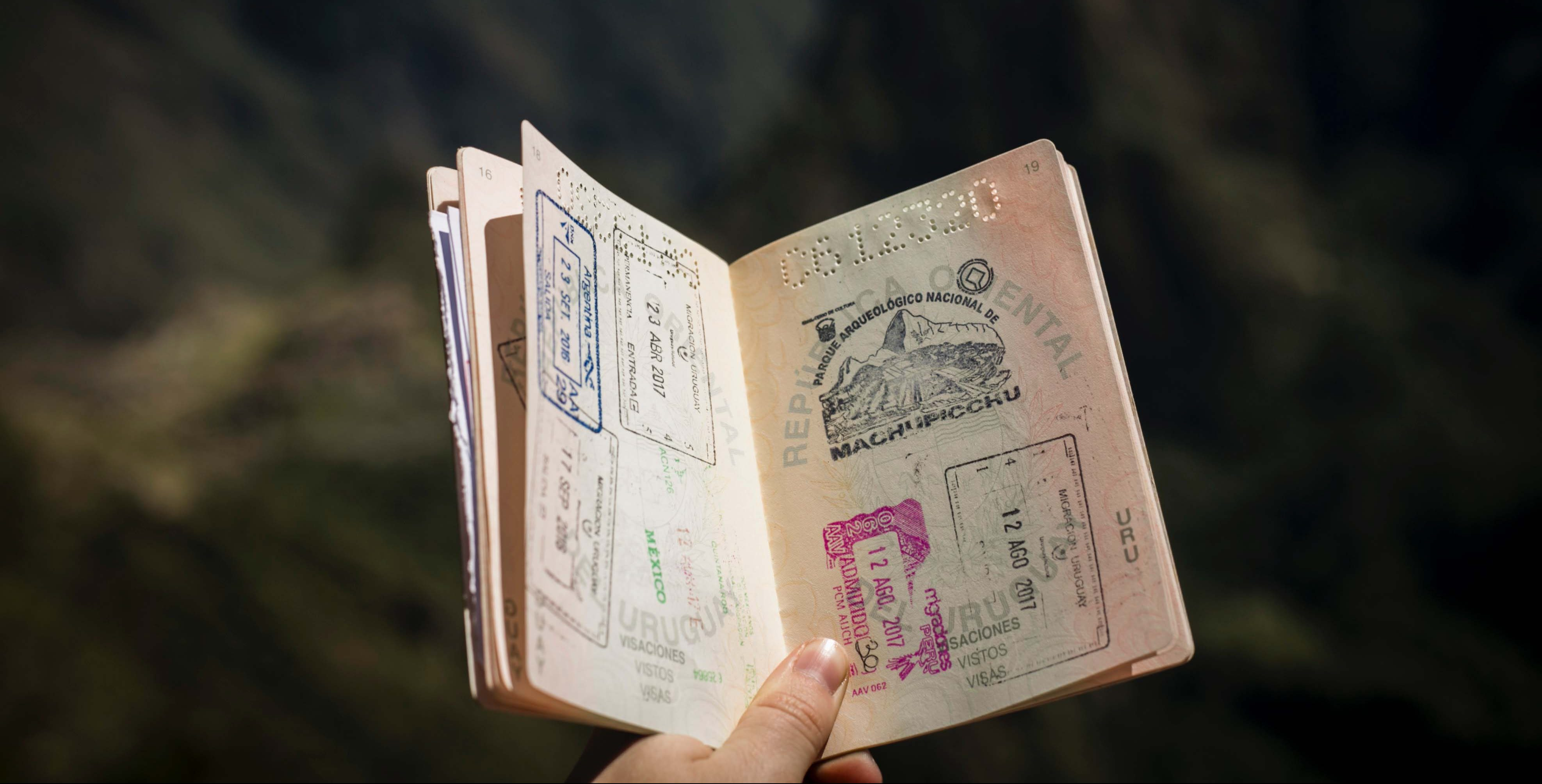 Immigration New Zealand looking into visa processing times