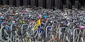 Dutch internationalisation review seeks to manage inbound numbers