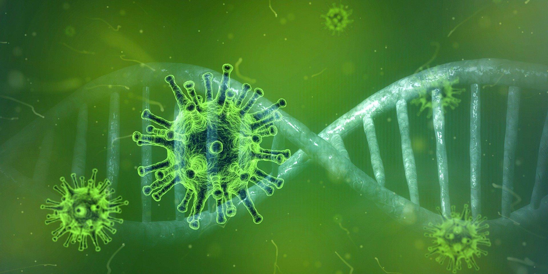 coronavirus ile ilgili görsel sonucu