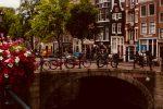 "Netherlands: 24% non-EU students ""uncertain"""