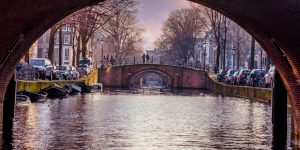 Netherlands: fewer int'l grads likely to stay